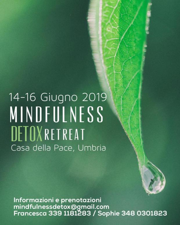 FB_event_MindfulnessDetox_Over_Version
